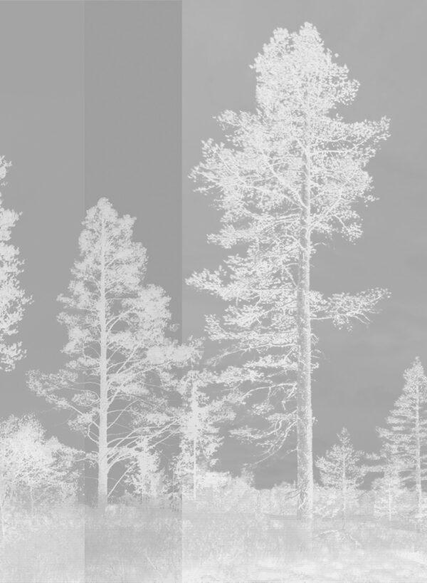 Panorama-Dark-Grey-T