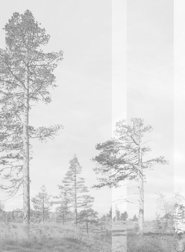 Panorama-grey-T