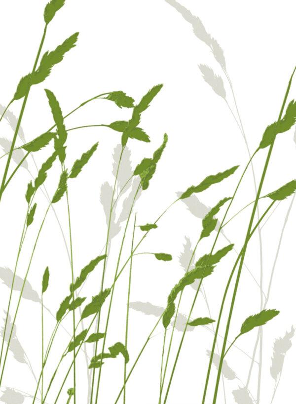 Straw-green-T