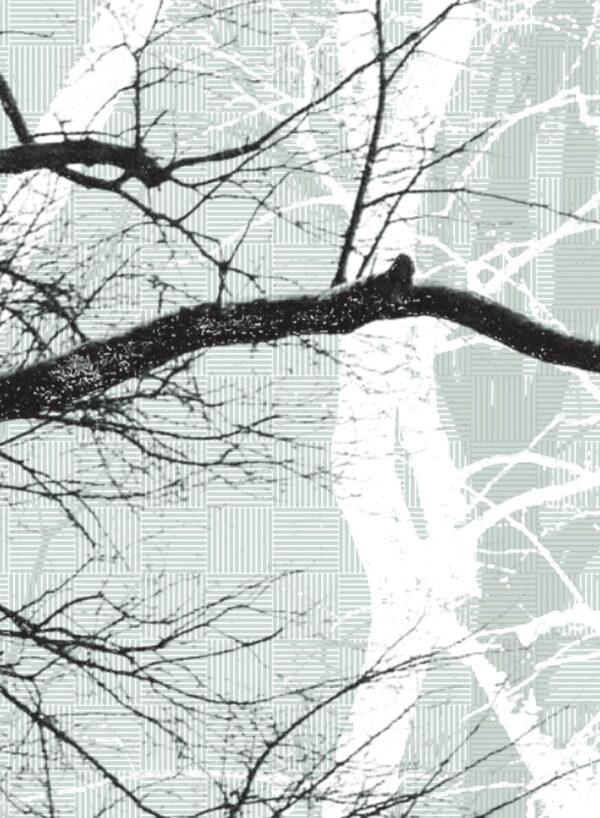 Wander-Wood-frost-D