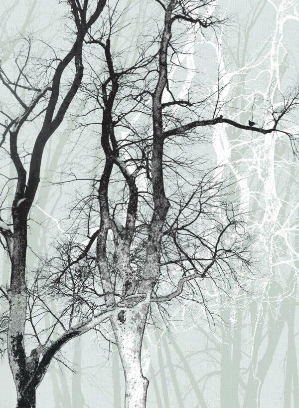 Wander-Wood-frost-T