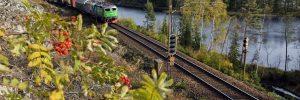 Foto: Kasper Dudzik. Dalgränsen 20091003. Green Cargo godståg draget av Rc -lok i höstlandskap vid Dalgränsen strax norr om Horndal.