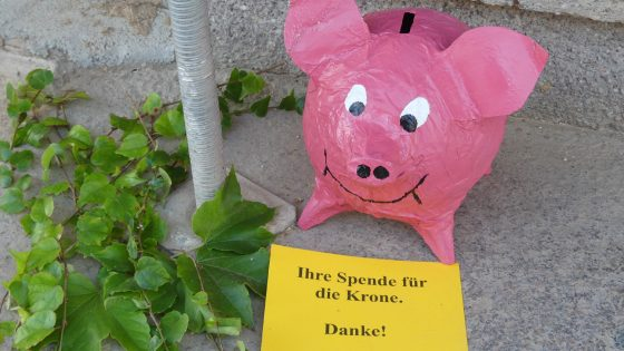 Das Spendenschwein der Bürgerinitiative Krone Schweina e.V.