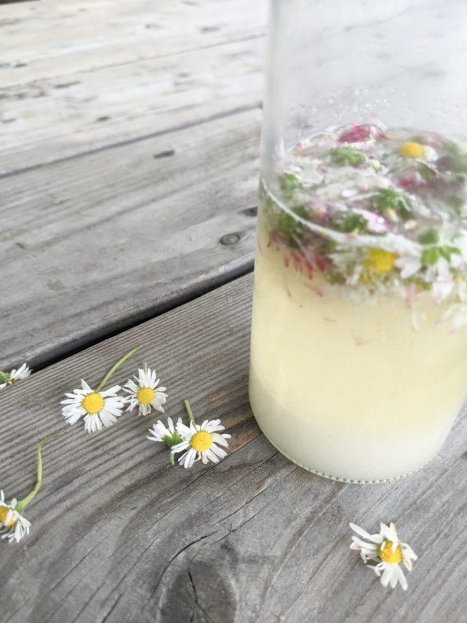 Was blüht denn hier? Fünf essbare Frühlings-Wildpflanzen und wie du sie in der Küche verwenden kannst!
