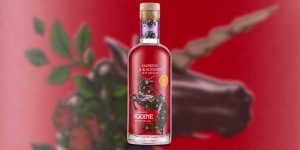 Lidl launches new Scottish gin liqueur