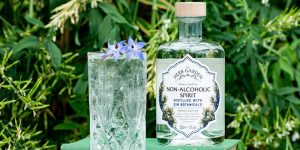 Old Curiosity alcohol free gin