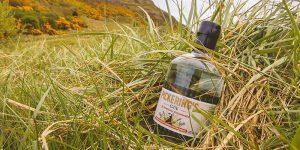 Pickering's Scottish Botanicals Gin