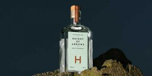 Height of Arrows gin