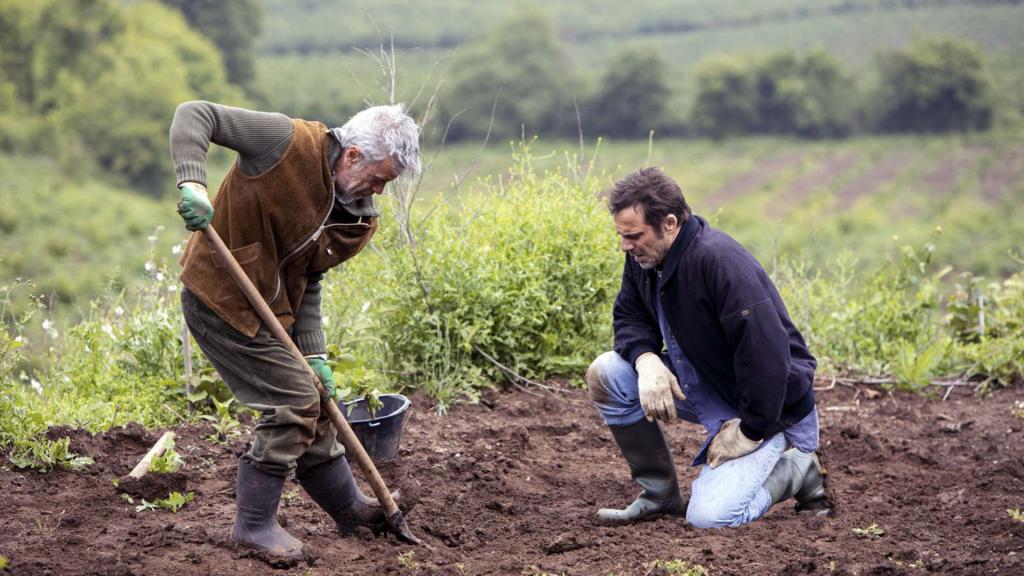 Critique «MASANTONIO: Le bureau des disparus» (2020): Un Dr House version limier Gênois… - ScreenTune