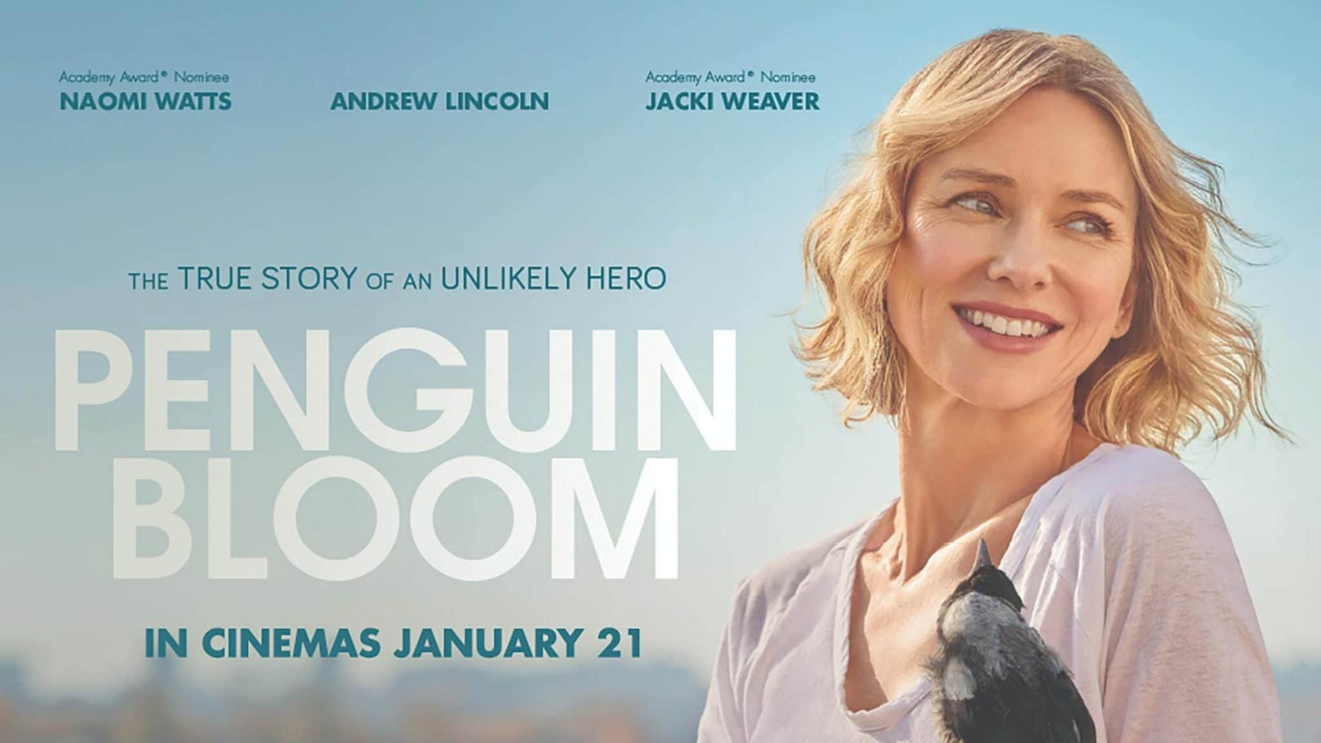 Critique « Penguin Bloom, l'oiseau guérisseur» (2020): Une vie suspendue à un battement d'aile !