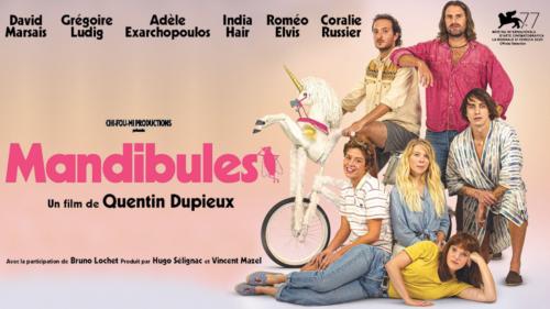Critique «Mandibules» (2020): Dupieux et la mouche du coffre - ScreenTune
