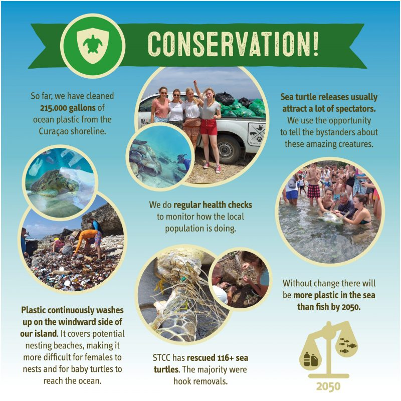 Conservation of sea turtles