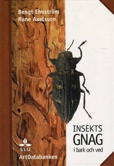 insektsgnag-i-bark-och-ved