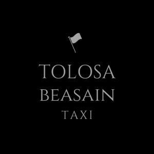 Logo Taxi-Tolosa.com taxi tolosa beasain
