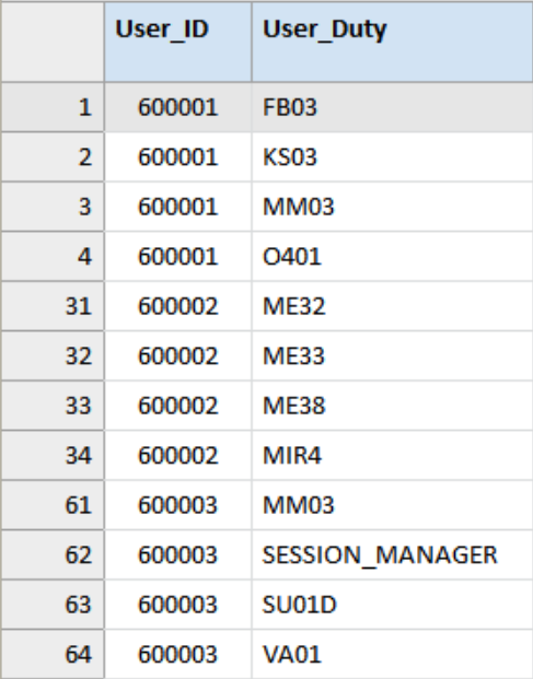 User_Duties table used for the segregation of duties analysis. The table contains the fields User_ID and User_Duty (transaction code).