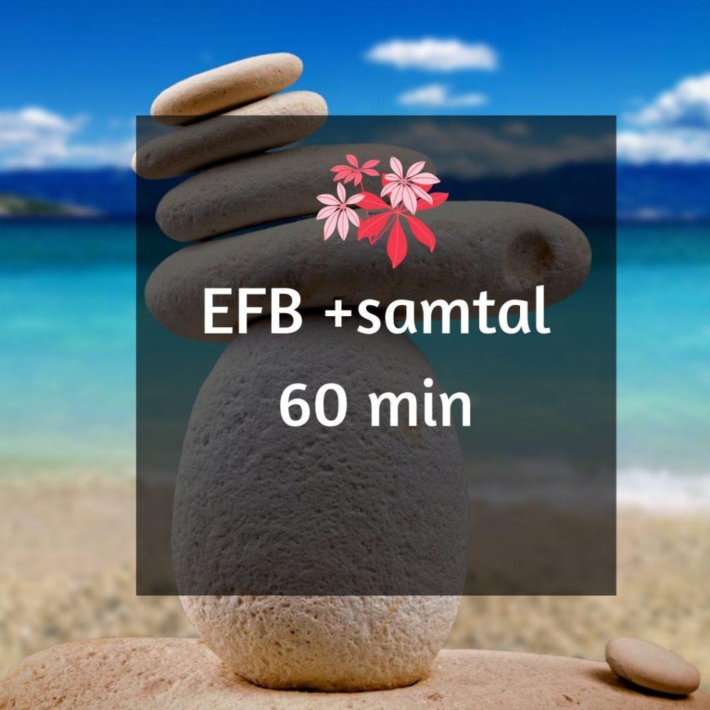 EFB+samtal
