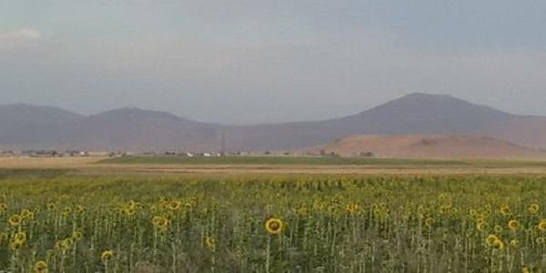 Girê-Shemê-3