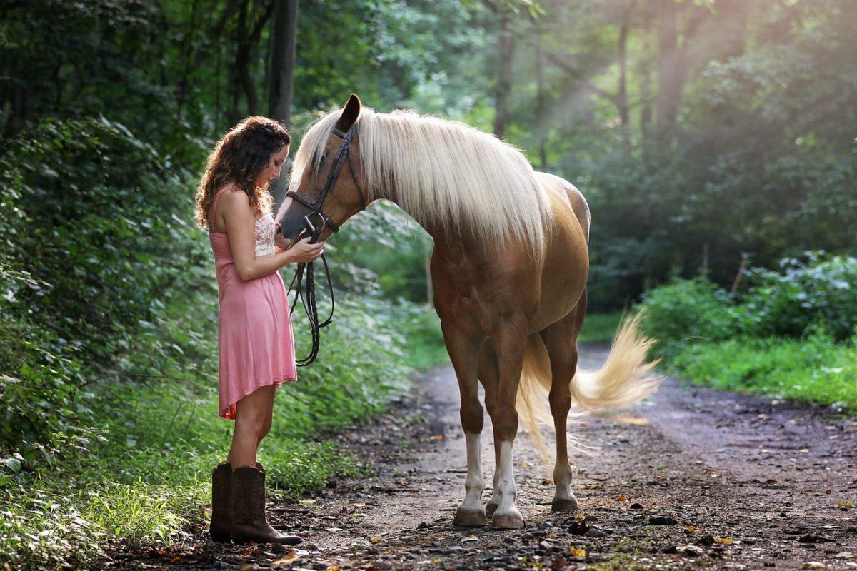 equitazione terapeutica