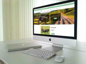 Shetland Pony Website