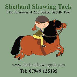 Shetland Pony Tack
