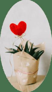 Oxytocin - Kærlighedens hormon