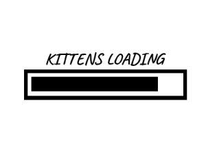 kittens loading