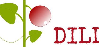 Julkalender - odlingsråd för dill