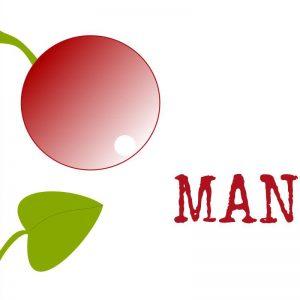 Julkalender - odlingsråd för mangold