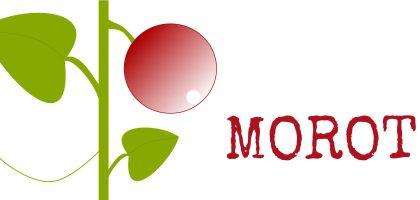Julkalender - odlingsråd för morot