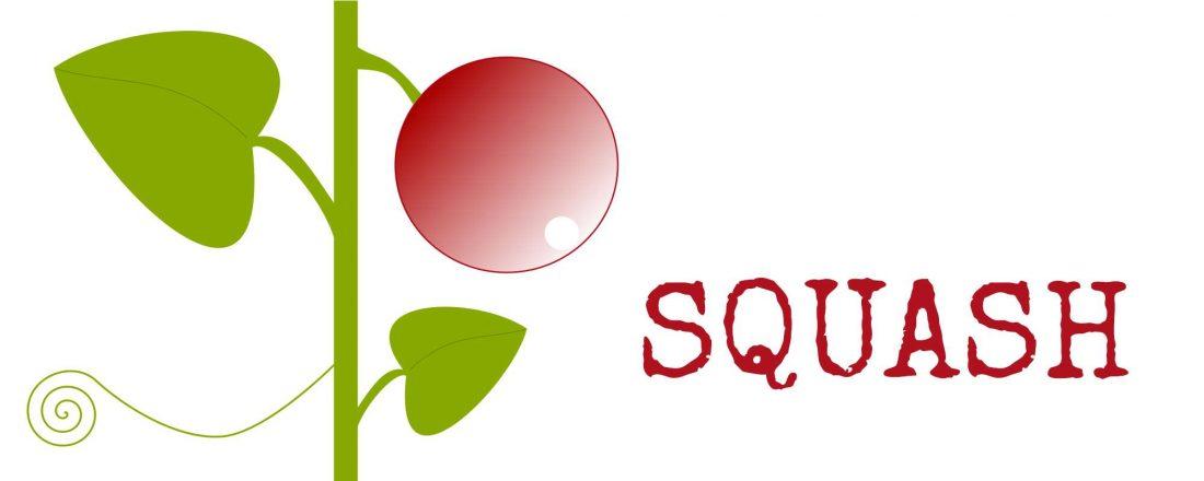 Julkalender eller julodlingskalender - squash