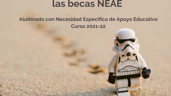 Becas para alumnado con Necesidad Específica de Apoyo Educativo (NEAE)