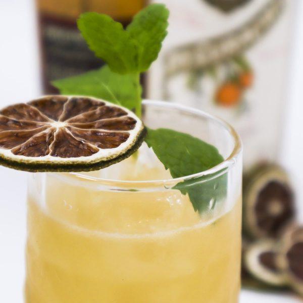 Sips&Nips   Cocktail webshop   Cocktail tastings en workshops   Cocktail catering