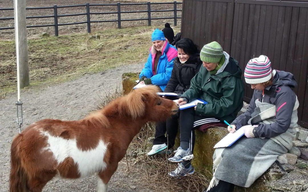 Har du lyst til å kommunisere med dyr?