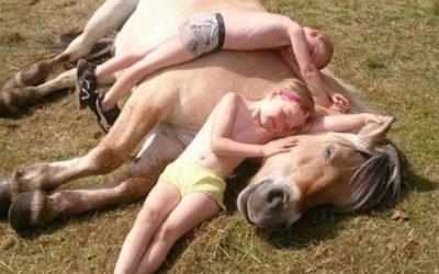Barna og hesten er gode venner