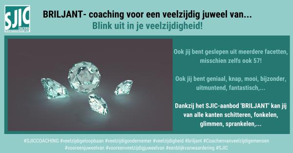BRILJANT- coaching voor een veelzijdig juweel van...