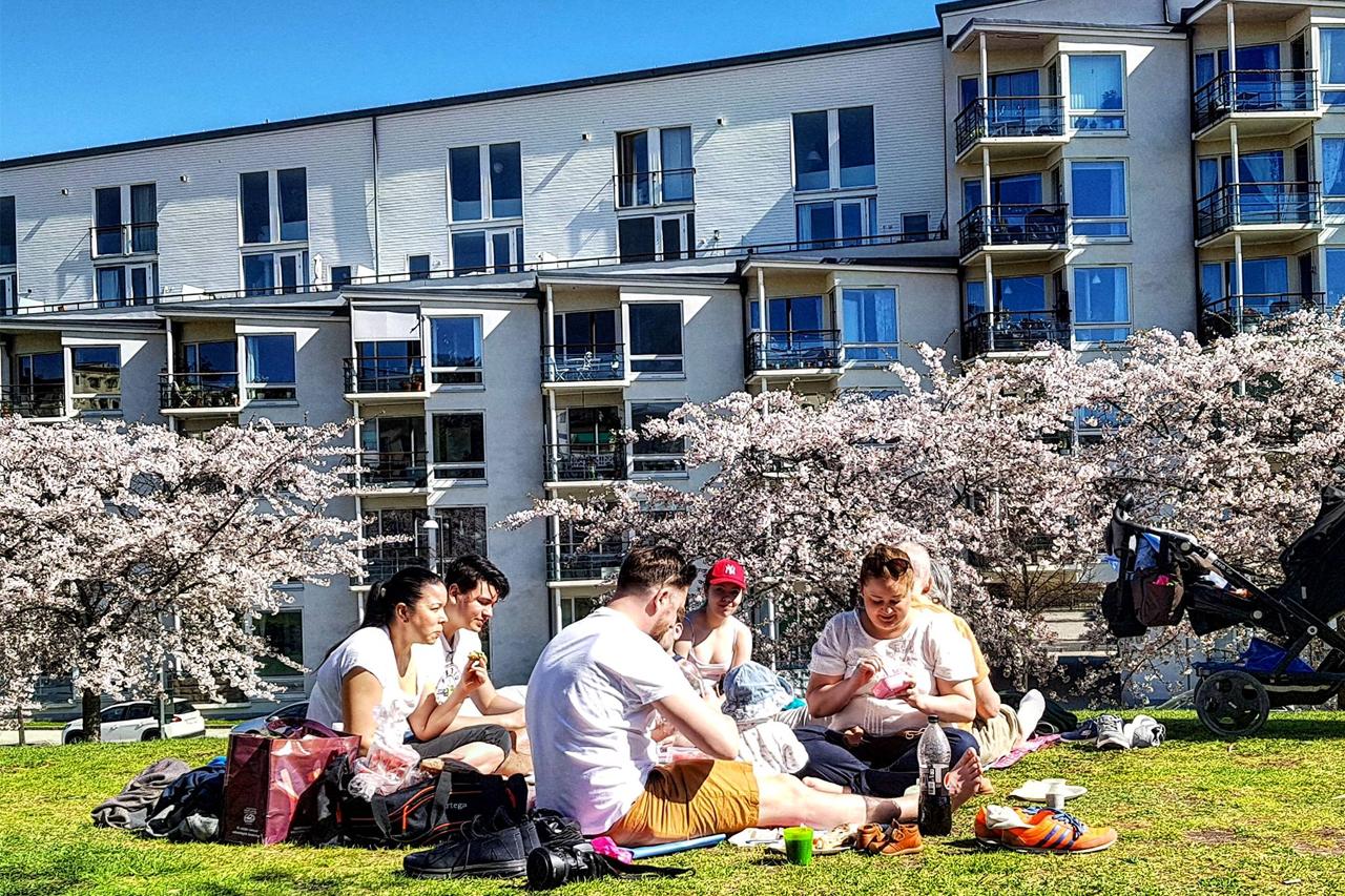Lumapark sommar picnic