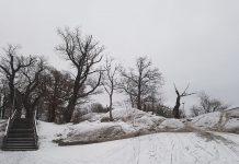 ekparken i Hammarby Sjöstad 2021
