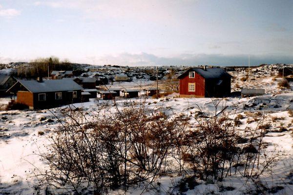 winter_houses