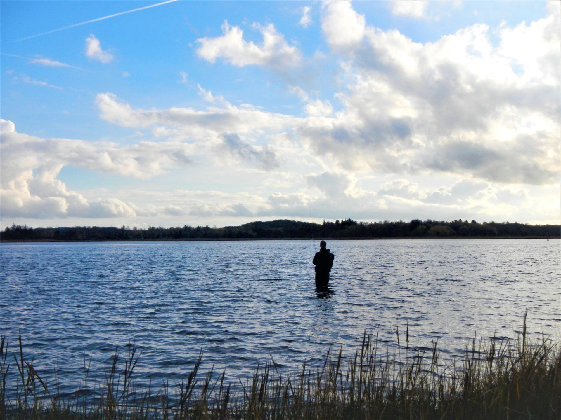Information om lystfiskeri i Skive Fjord.