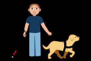 Illustrasjon En elev med brunt kort hår. Hen har blindestokk i den ene hånden og en førerhund i den andre hånden.