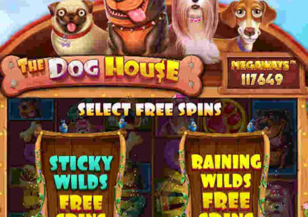 THE DOG HOUSE MEGAWAYS SLOT REVIEW