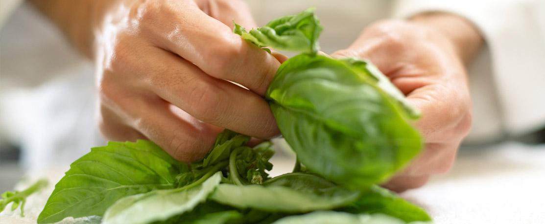 Besonders chlorophyllhaltig und ideal für die Zubereitung im Slow Juicer: Spinat