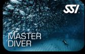 SSI master diver smögen