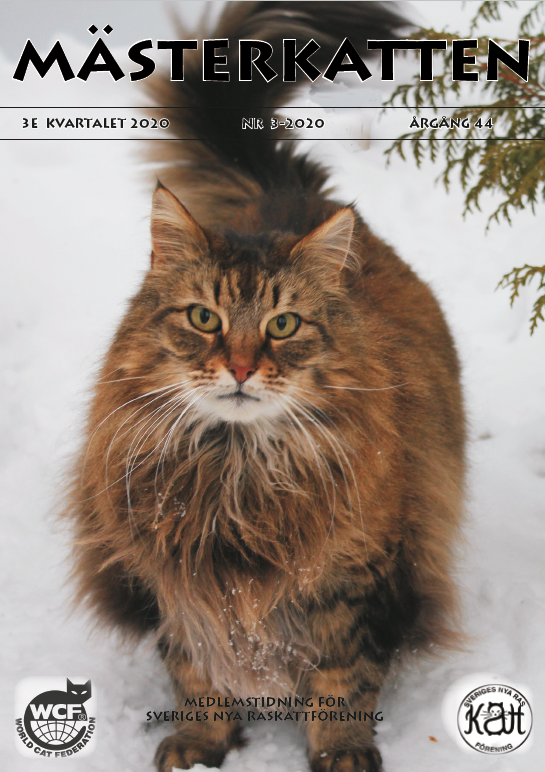 Härlig vinterläsning – Nu finns Mästerkatten Nr 3/2020 att läsa online!