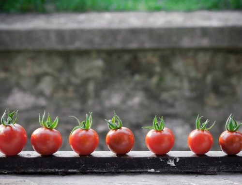 LA METHODE POMODORO – BOOSTEZ VOTRE PRODUCTIVITE