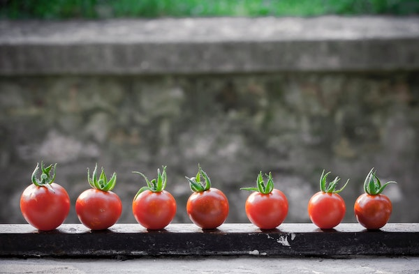 La méthode pomodoro_article