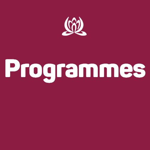 Les programmes de So Organised