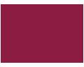 So Organised Logo
