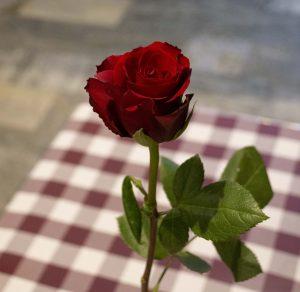 En röd ros i fokus med restaurangens bord och golv i bakgrunden ur fokus