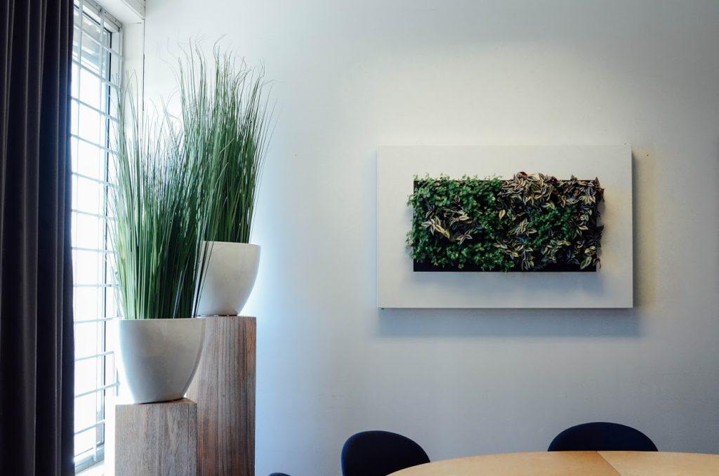 växter till arbetsplatsen